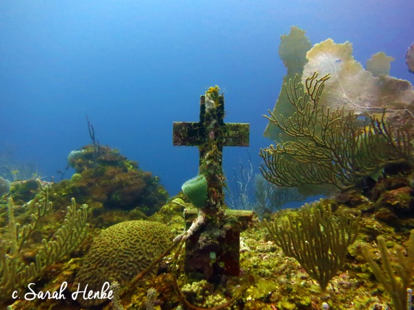 Photo of Menagerie dive site in Roatan by Sarah Henke